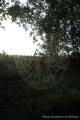 p7271206_feliratos_gomorszolos_44
